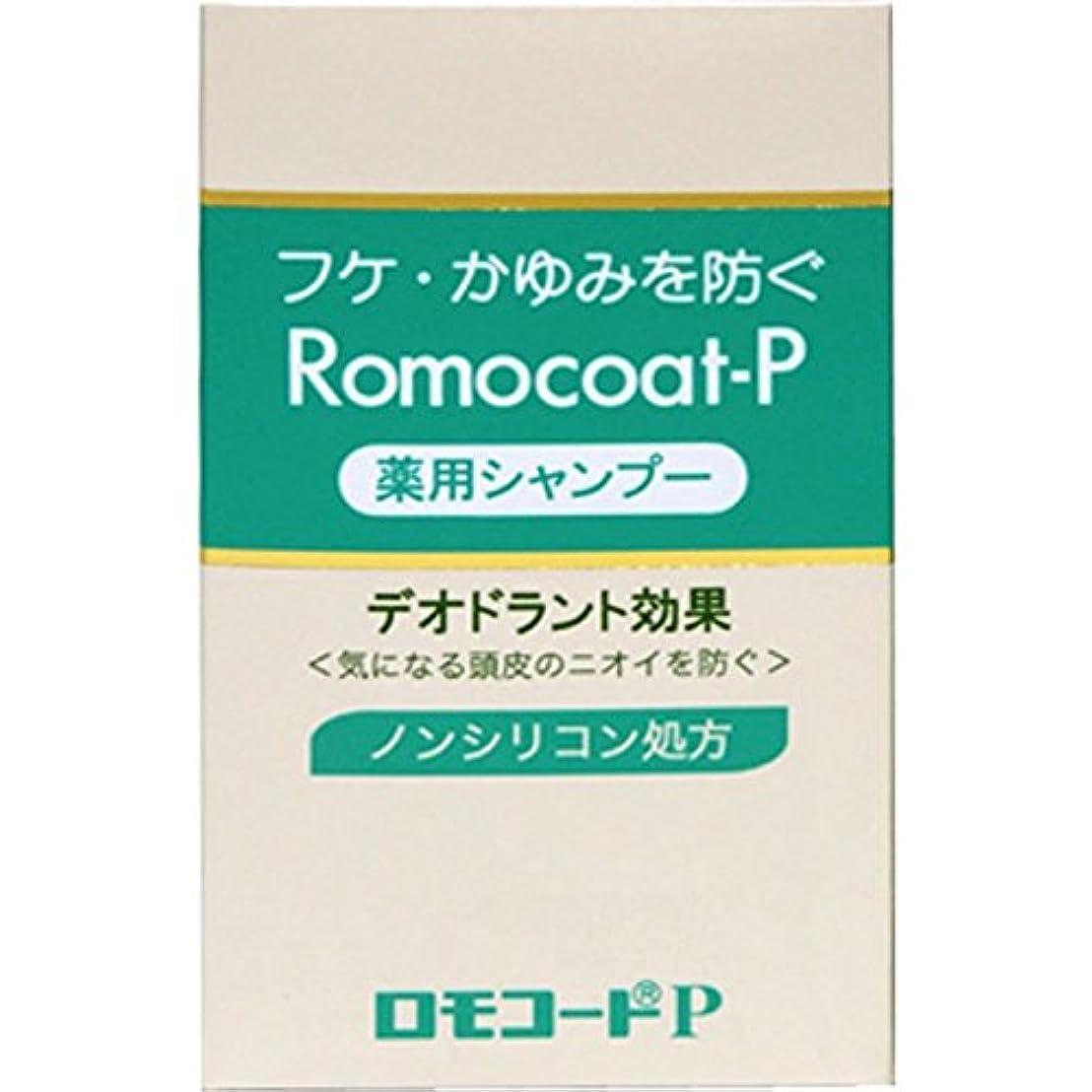航空会社グリットパイプ全薬工業 ロモコートP 180ml (医薬部外品)