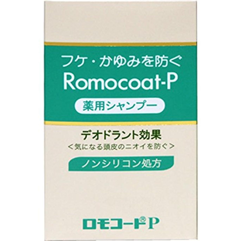 精神間違い劇作家全薬工業 ロモコートP 180ml (医薬部外品)