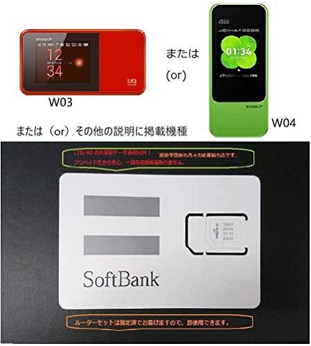 キャリア SIM 超大容量 prepaid DATA SIM (300GBプラン, 12ヶ月,モバイルルーターセット)