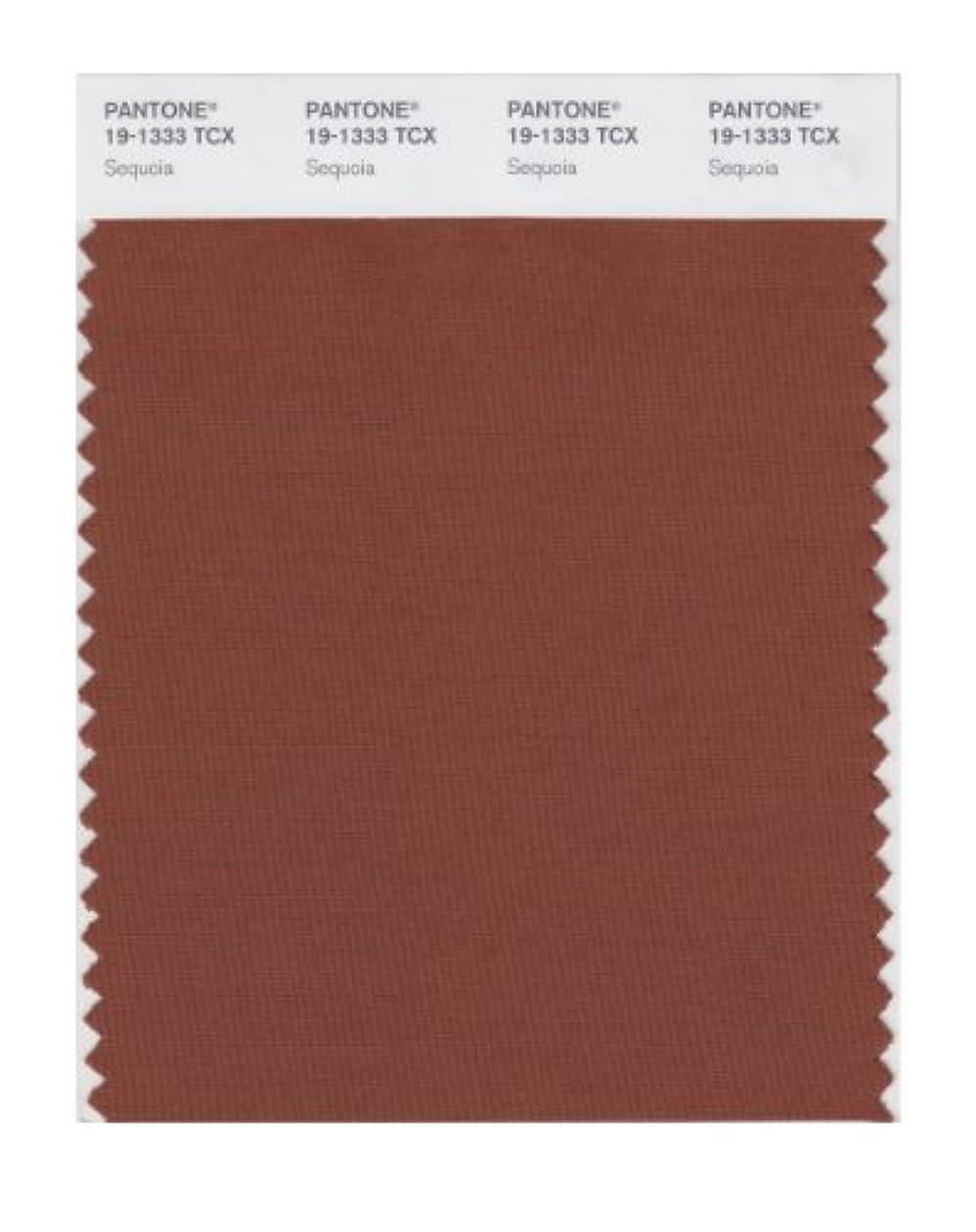 小売玉ねぎうねるPantone色見本スマートカード 19-1333X 1