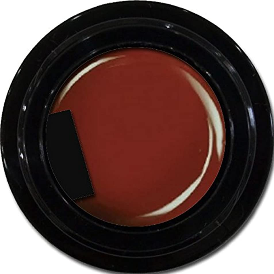 ストレッチ省略するカップルカラージェル enchant color gel M407 Bordeaux 3g/ マットカラージェル M407ボルドー 3グラム