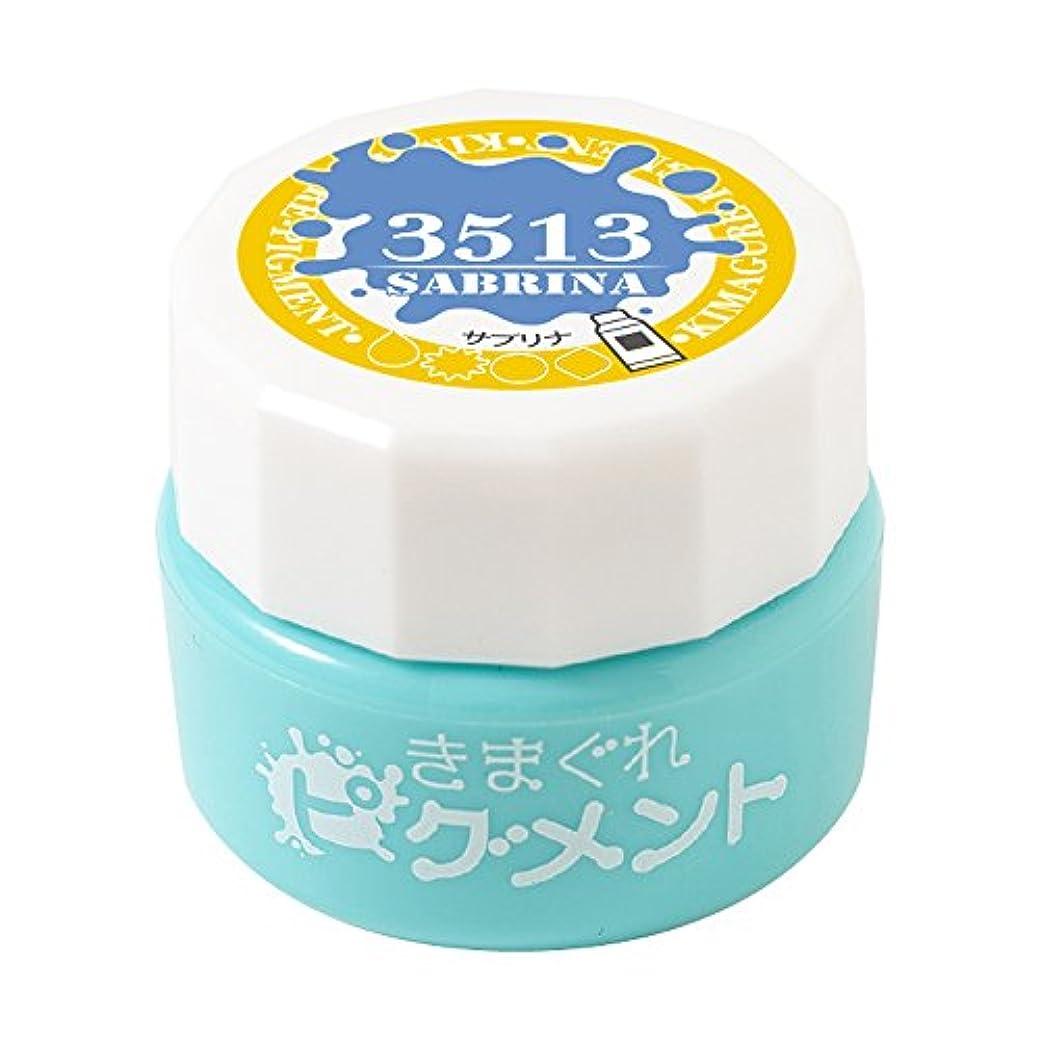 Bettygel きまぐれピグメント サブリナ QYJ-3513 4g UV/LED対応