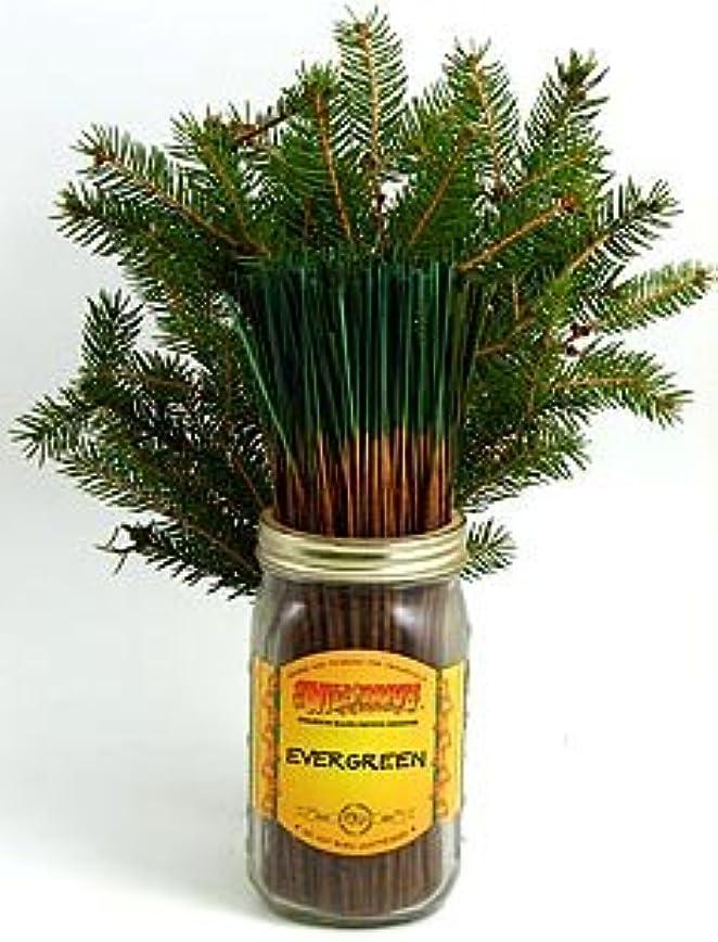 中毒不実誘導Evergreen – 100ワイルドベリーIncense Sticks
