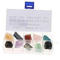 P Prettyia 10種類 鉱物 岩石試料 ロック ミネラル 地質科学おもちゃ 全2色 - #1
