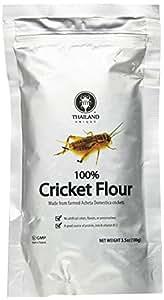 未来のスーパーフード Cricket Flour made of 100% Cricket 粉末コオロギ 高プロテイン [並行輸入品]