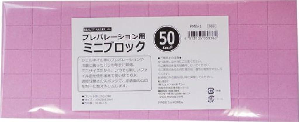 細い温室ひねりビューティーネイラー 爪やすり プレパレーションミニブロック 50pcs PMB-1