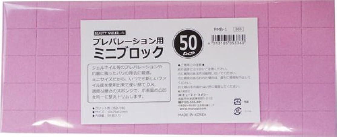 ボットボンド恩恵ビューティーネイラー 爪やすり プレパレーションミニブロック 50pcs PMB-1
