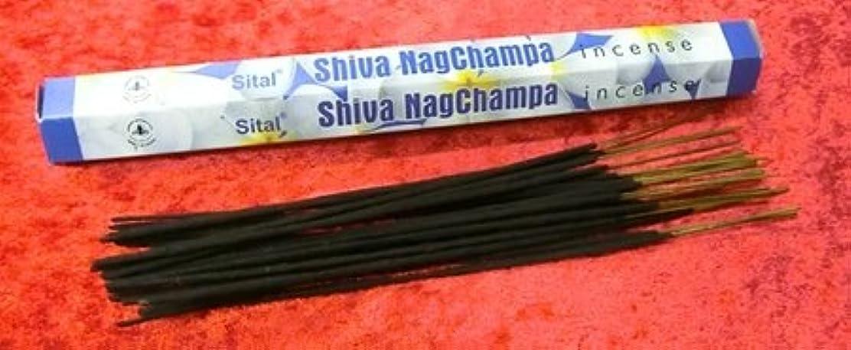 妨げるスケジュールファンブルインセンス お香 Sital Shiva Nagchampa 約ナグチャンパ香 20本入り