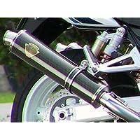 アールズギア(r's gear) フルエキゾーストマフラー ワイバン ツイン カーボン GSX1300R (-07) WS02-02CF