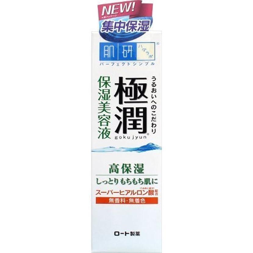 カビ体系的に矩形肌研(ハダラボ) 極潤 ヒアルロン美容液 30g