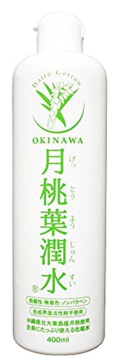確認する姉妹サイレント化粧水 月桃葉潤水 400ml 1本