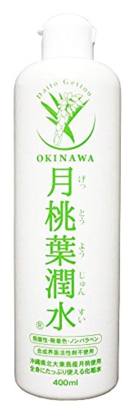 手順作るインシュレータ化粧水 月桃葉潤水 400ml 1本