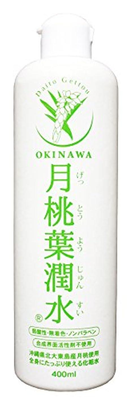 合金無実純度化粧水 月桃葉潤水 400ml 1本