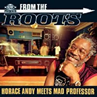 From the Roots [12 inch Analog]