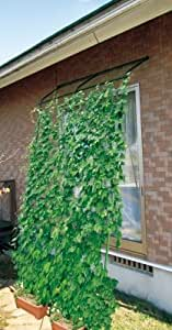 【転倒防止パーツ付 】DAIM 緑のカーテン アーチ型 伸縮立掛けタイプ 180cm幅×高さ190~340cm(直立時)