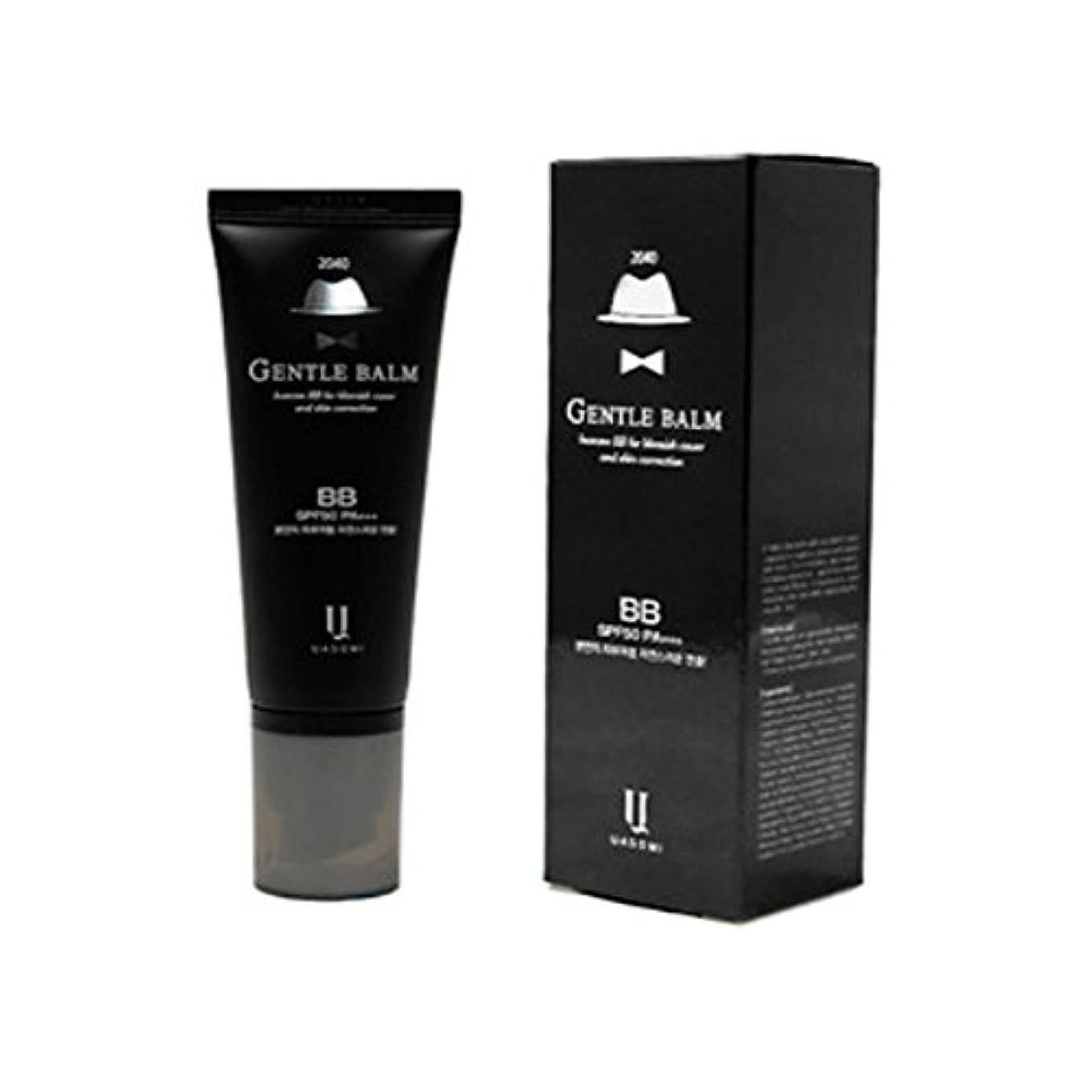 収縮延ばす気楽な(男 BB クリーム 韓国 日焼け止め) homme 2040 BB for blemish cover and skin correction korea beauty Gentle bam SFP50 PA+++ (...