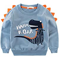 Csbks Kids Cotton Sweatshirt Boys Long Sleeve Pullover Tops Toddler 2-8 Years