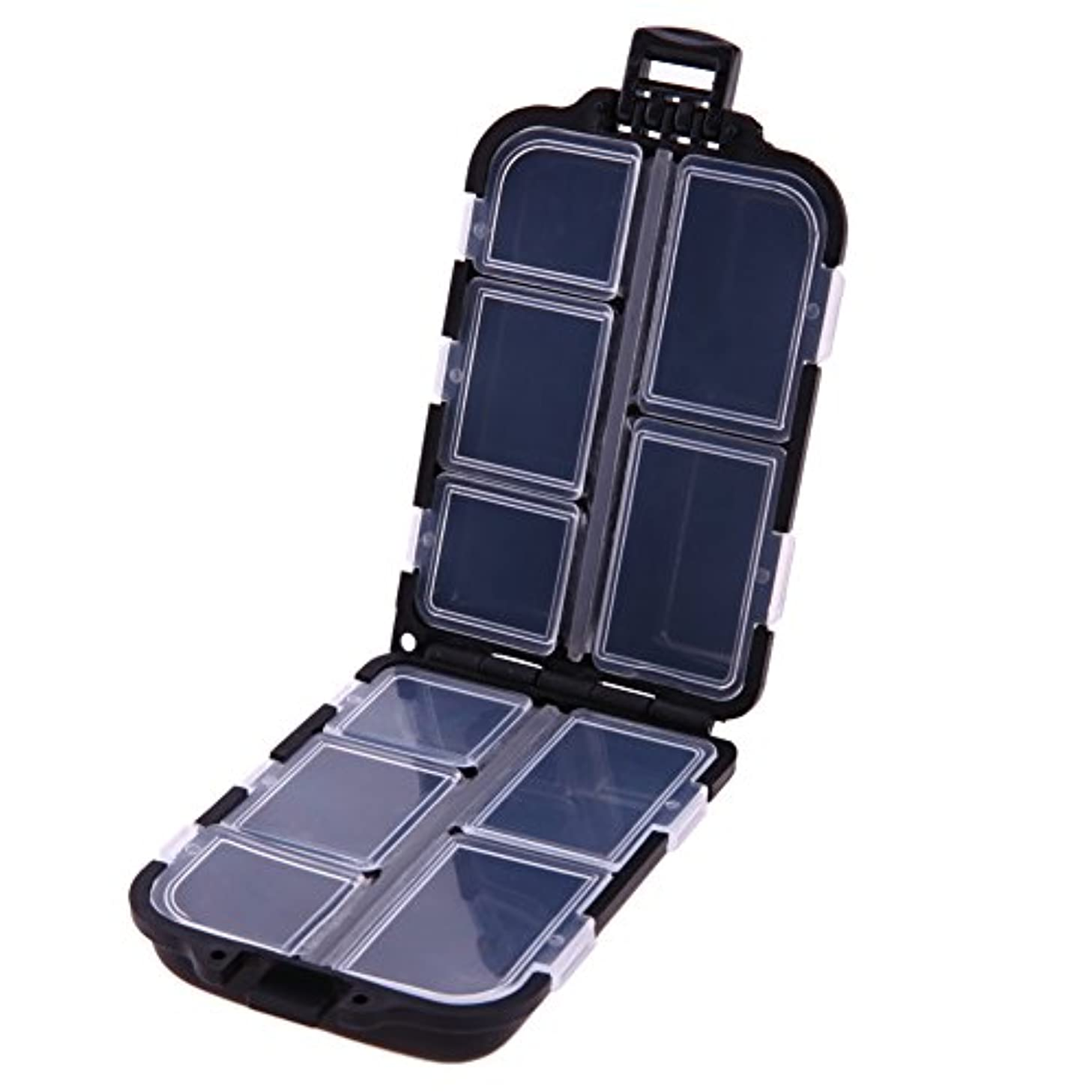 最初に潤滑するわずかなGaoominy 10格実用性のある釣りタックルボックスルアーフック硬質プラスチック釣具、ブラック
