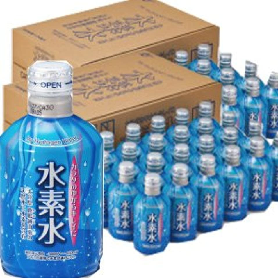 雲スロベニアお酒【24本x2ケース】 カラダの中からキレイに水素水 300mlx48本 4514544010518