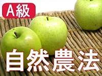 【A級品】竹嶋有機農園 王林林檎 5kg(化学農薬・化学肥料不使用)