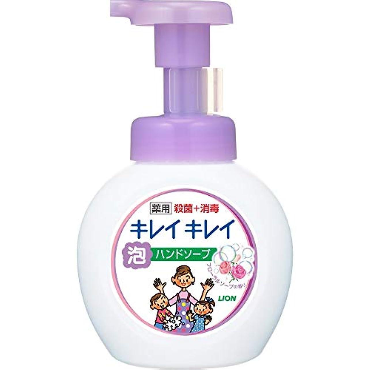 ホールド形状壮大なキレイキレイ薬用泡ハンドソープ フローラルソープの香り 本体250mL+詰替450mL