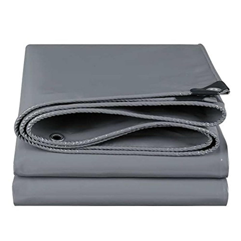 デンマーク語わかりやすい東12J-weihuiwangluo 防雨布防水防水シート防水日焼け止め貨物防塵防風カバー抗酸化と耐摩耗 (Color : Grey, サイズ : 3x6M)