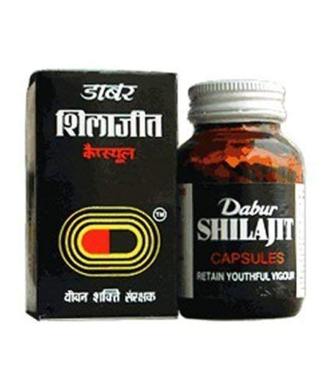 適度に減衰けん引100 Capsules by Dabur Shilajit