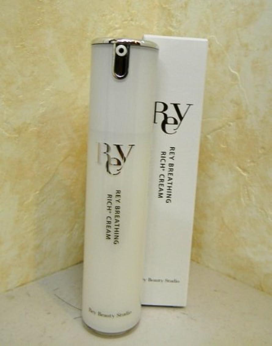 ナビゲーションコンベンション特殊REY ブリージング リッチ+クリーム 20g