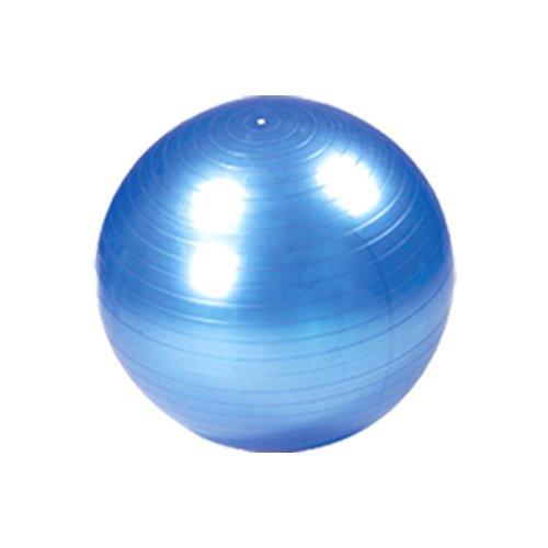 こだわり一番館 バランスボール 65cm  ブルー