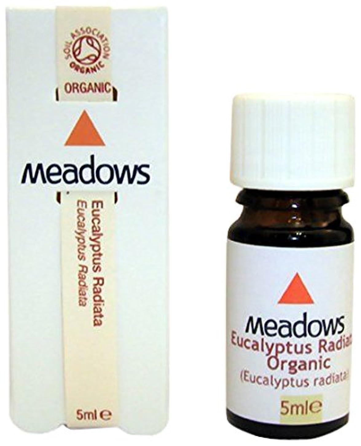 清める新鮮な始めるメドウズ エッセンシャルオイル ユーカリ(グロブルス) 10ml