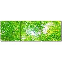 絵画 風景画 グリーン 葉 グリーン LB アートパネル 絵画 インテリア 壁掛けアート (額付きの完成40*40cm*3pcs