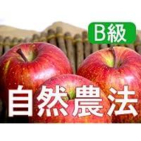 【B級品】竹嶋有機農園 紅玉4,5kg(化学農薬・化学肥料不使用) ※訳あり ※傷あり