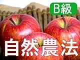 【B級品】竹嶋有機農園 紅玉4,5kg (化学農薬・化学肥料不使用) ※訳あり ※傷あり