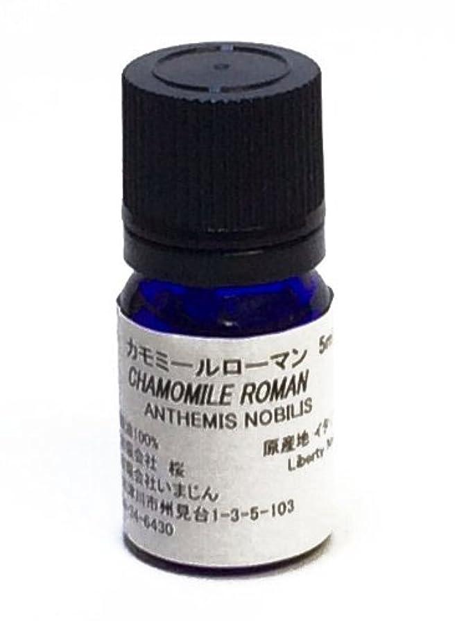 講義もちろんグッゲンハイム美術館カモミールローマン 5ml 【エッセンシャルオイル?精油?手作りコスメ材料?手作り石けん材料】【いまじん】