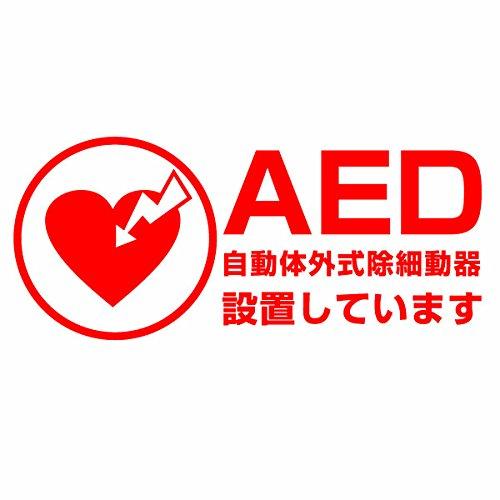 【AED設置案内表示用カッティングステッカー 2枚組 幅約22cm×高約9.6cm】カラー:赤(レッ...