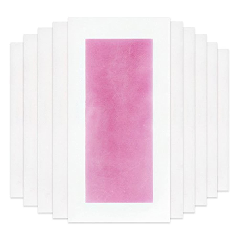 文献パイプブランドRaiFu 脱毛 コールド ワックス ストリップ 紙 脱毛紙 プロフェッショナル 夏の脱毛 ダブル サイド ボディ除毛 10個 ピンク