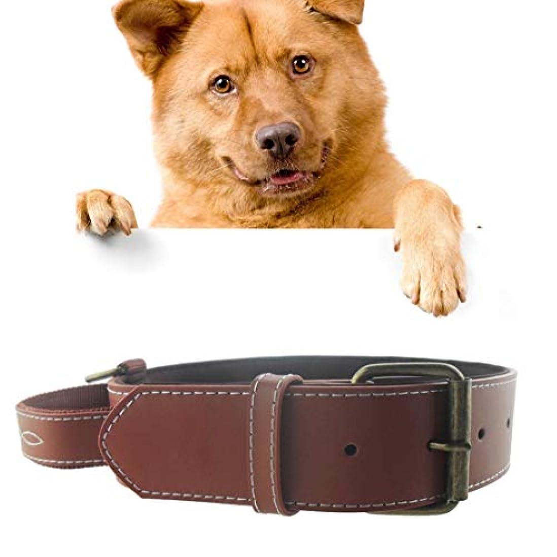 神学校シガレットわずかにペットチェストストラップ LLPレザーペット犬用首輪ペット大ペット用サイズ:4.5 * 48.5cm(ブラック) (色 : Coffee)