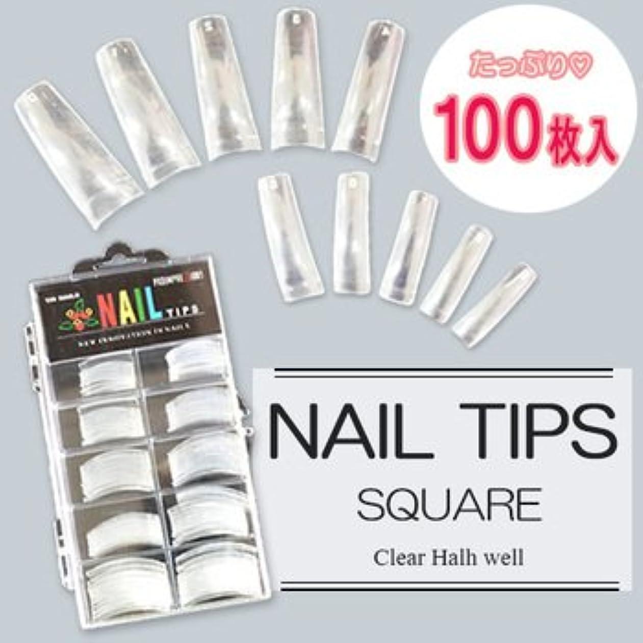 第九どうやら許すネイルチップ(クリア) 100枚入 #0~9サイズ つけ爪 ハーフチップ ネイルアート