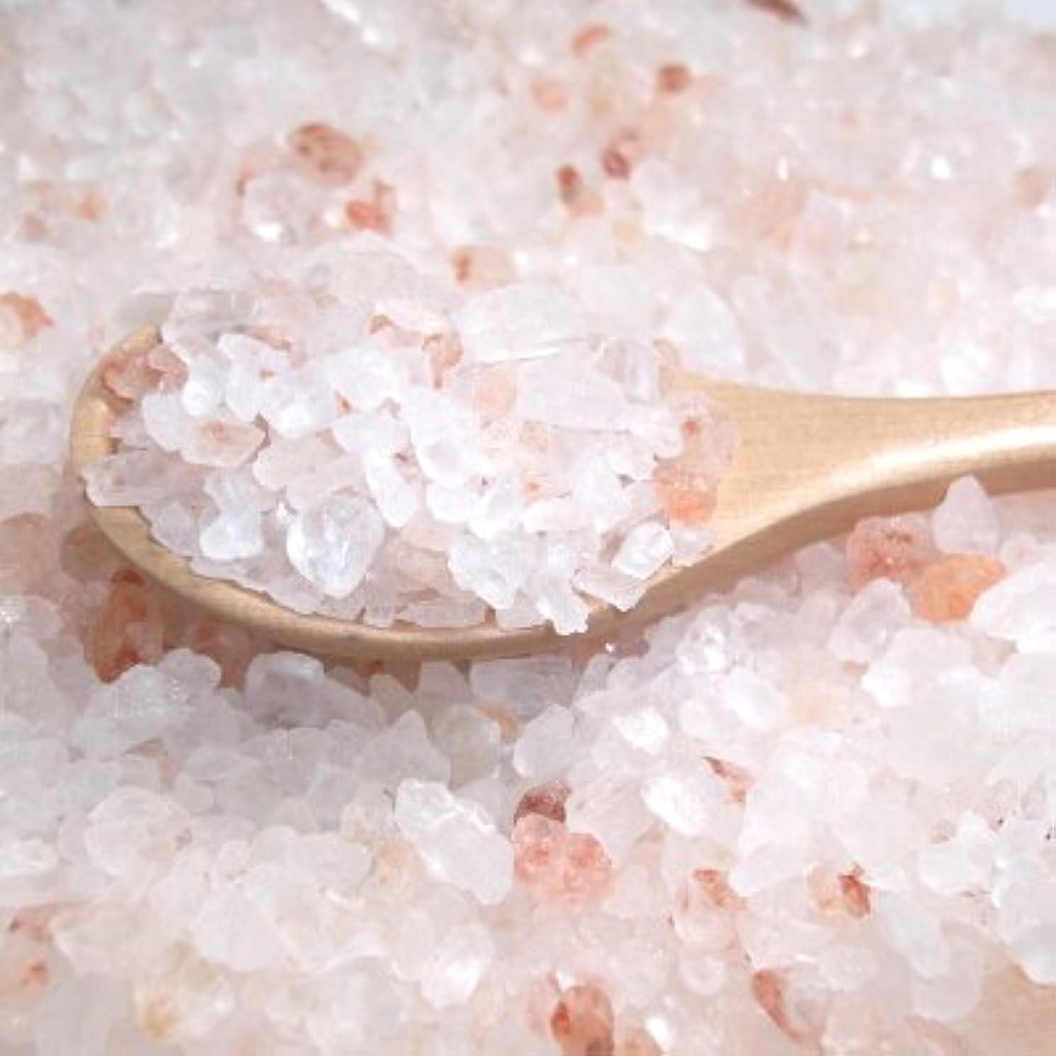 傾向アルミニウム妻ヒマラヤ岩塩 ピンクバスソルト(1-3ミリサイズ) 400g