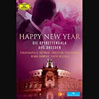 Happy New Year [DVD] [Import]