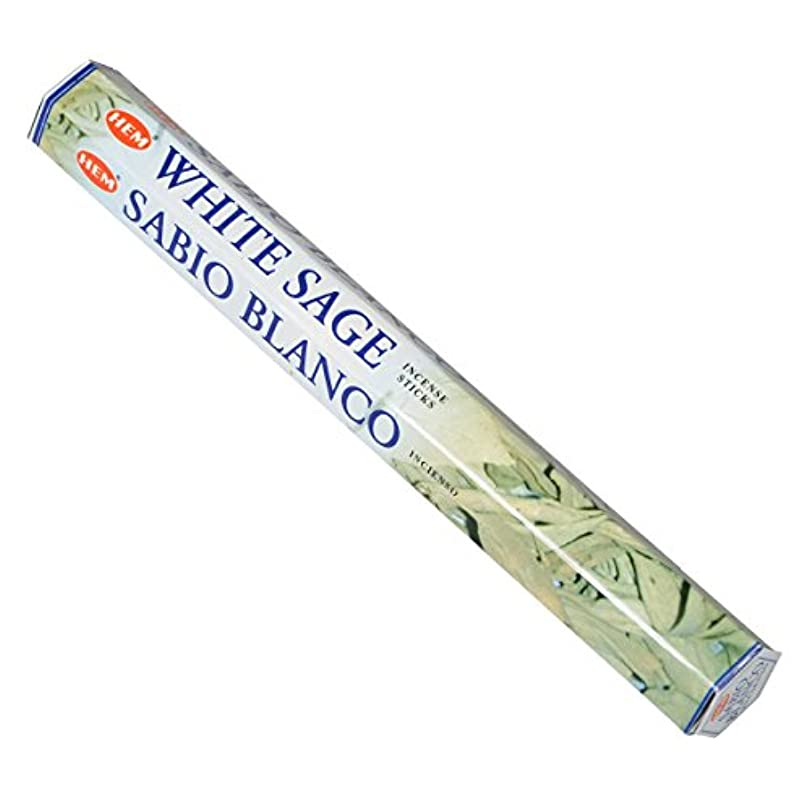 しなやかウイルス最小HEM(ヘム) ホワイト セージ WHITE SAGE スティックタイプ お香 1筒 単品 [並行輸入品]