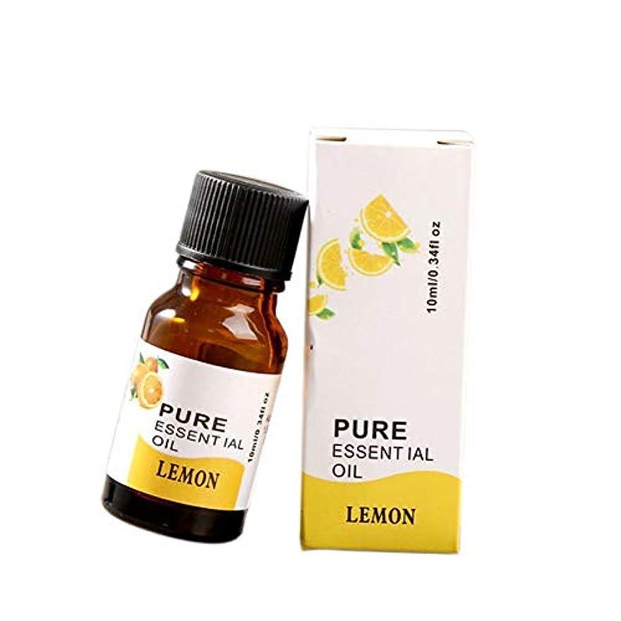シロクマペンコメント(トラベリング ライト) Traveling Light 10ml アロマ精油 加湿器 専用精油 気分転換 いい香り 12種香り 1個入れ (10)
