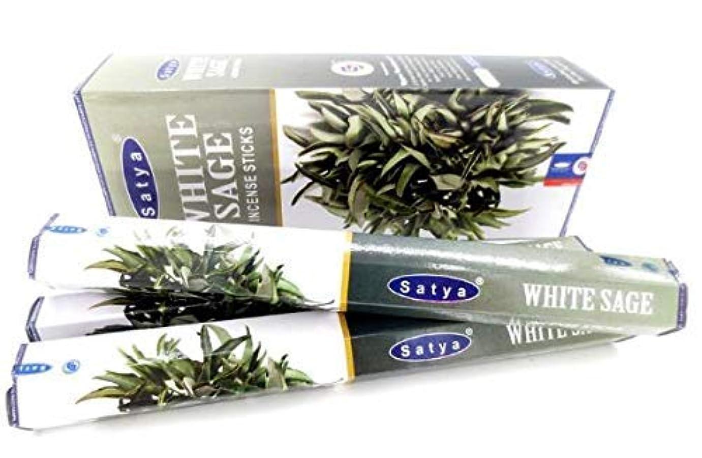 平野曲がったジェスチャーWhite Sage Incense Sticks   6 Packs x 20 Sticks   Box of 120 Sticks   Export Quality