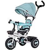 子供用三輪車、散歩用三輪車、手押し用三輪車を回すことができます ( Color : 2 )
