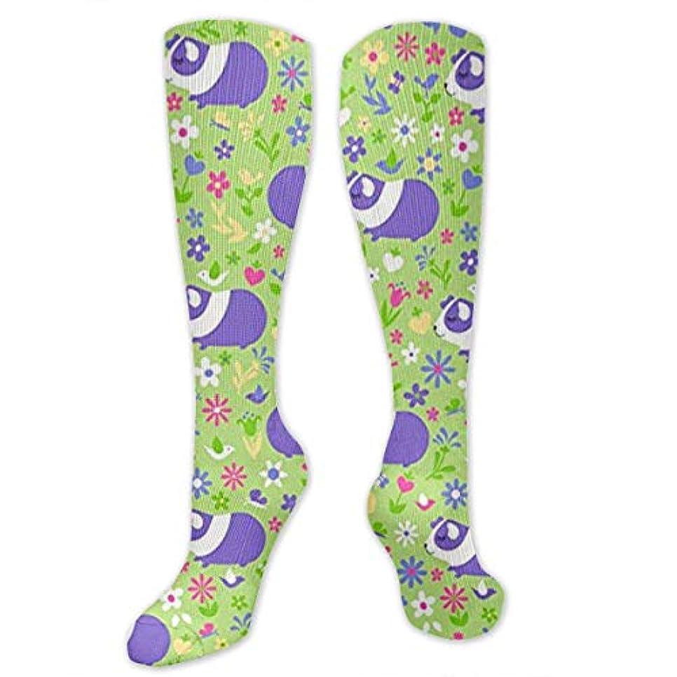 佐賀スリンク取り除く靴下,ストッキング,野生のジョーカー,実際,秋の本質,冬必須,サマーウェア&RBXAA Guinea Pig Green, Pink, Purple Socks Women's Winter Cotton Long Tube...