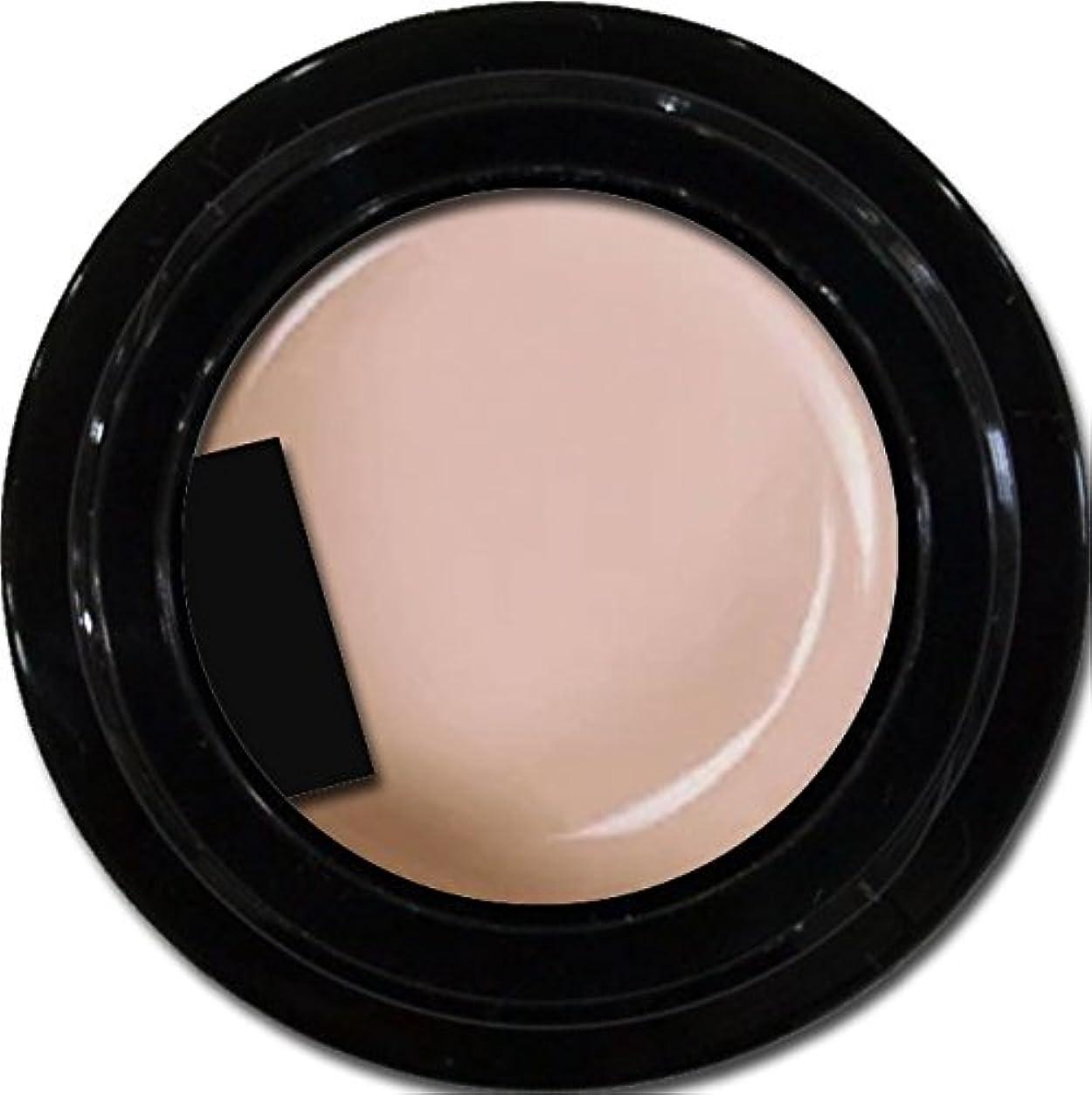 インタビューシェード味付けカラージェル enchant color gel M205 NudePink 3g/ マットカラージェル M205 ヌードピンク 3グラム
