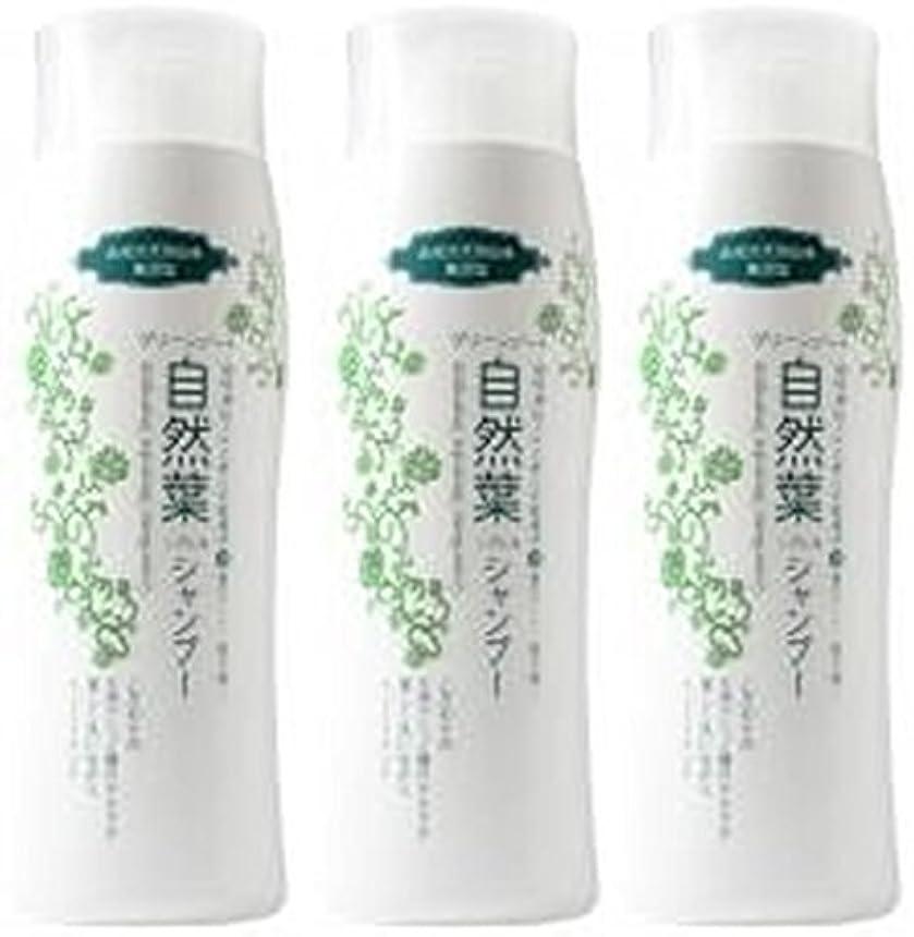柔らかさつば心理的グリーンノート 18種天然アミノ酸 自然葉シャンプー 300ml   3本セット