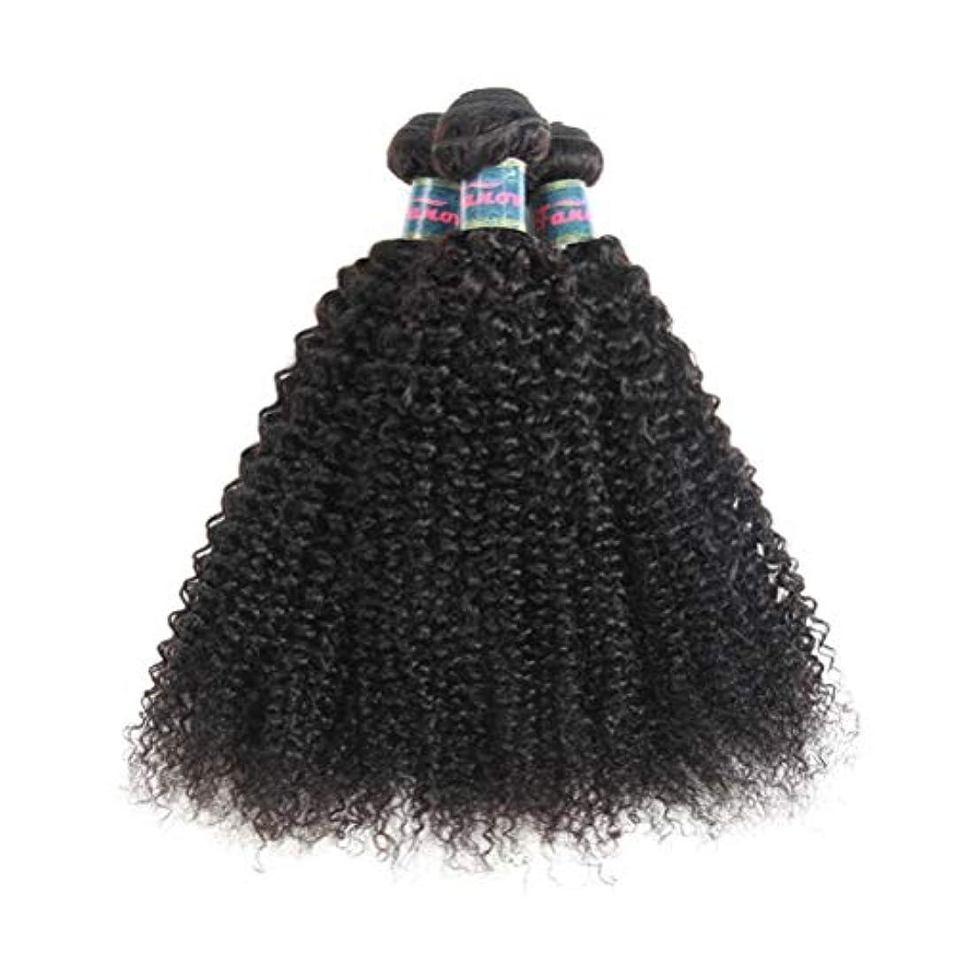 時期尚早航海の冗長髪織り未処理ブラジルの深い巻き毛の束本物の人間の髪の毛の束バージンブラジルの髪