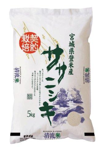 【一味違うこのお米】宮城県登米産 ササニシキ 白米 10kg 【 5kg×2 】
