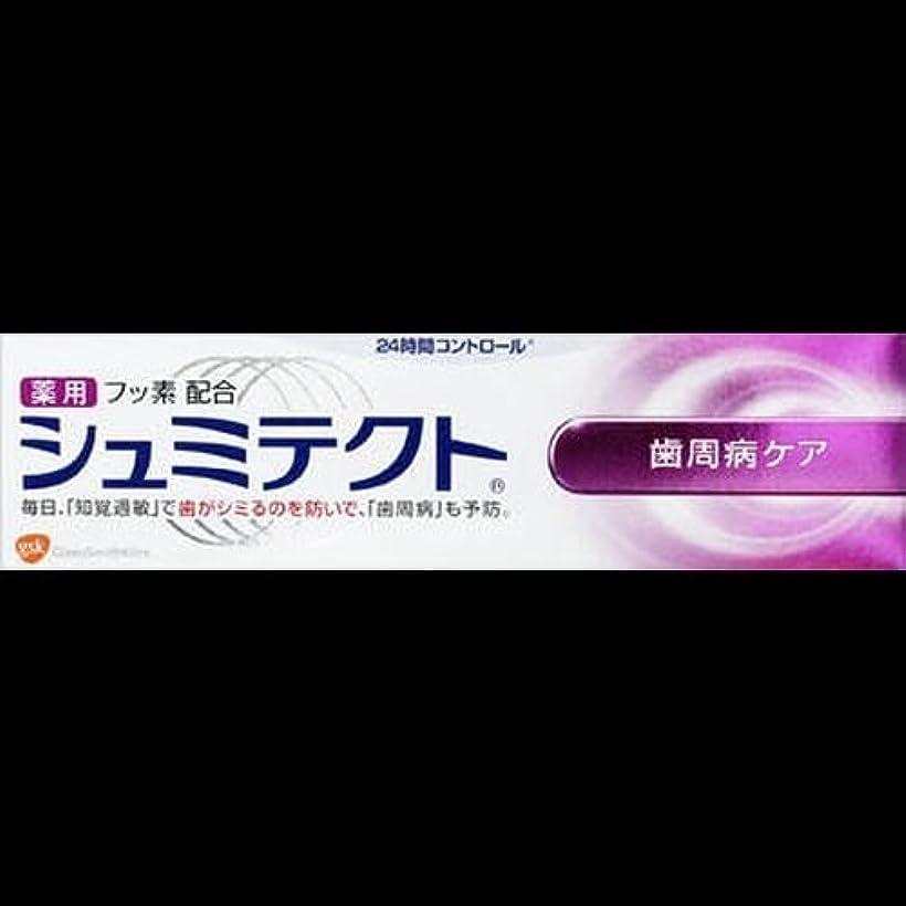 はさみ時折舗装する【まとめ買い】薬用シュミテクト 歯周病ケア 90g ×2セット